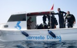 Sorrento Diving